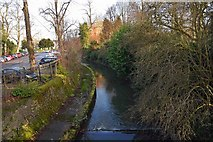 SP0683 : River Rea by Cannon Hill Park, Edgbaston, Birmingham by P L Chadwick