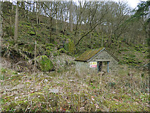 SE1039 : Disused quarry off Harden Road, Bingley by Stephen Craven