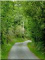 SN5458 : Narrow Lane north-west of Trefilan in Ceredigion by Roger  Kidd