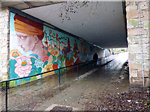 NS5574 : Gavin's Mill underpass by Thomas Nugent