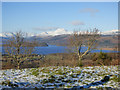 NS4385 : Loch Lomond from Duncryne Hill by Thomas Nugent