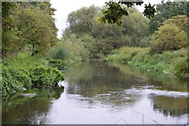 TQ2767 : River Wandle by N Chadwick