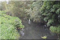 TQ2766 : River Wandle by N Chadwick