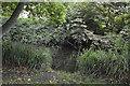 TQ2866 : River Wandle by N Chadwick