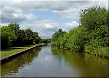 SJ8842 : Canal east of Handford in Stoke-on-Trent by Roger  Kidd