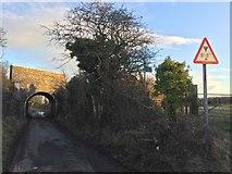 SS8178 : Railway bridge by Alan Hughes