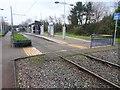 SO9695 : Bradley Lane tram stop, West Midlands by Nigel Thompson