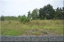 TQ1585 : Railway cutting by N Chadwick