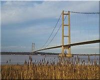 TA0223 : Humber Bridge from the south by Paul Harrop