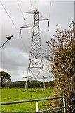SX4061 : Pylon in field by N Chadwick