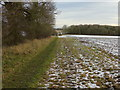 SE4184 : Footpath leading towards Fox Covert by Chris Heaton