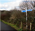 ST3089 : National Cycle Network signpost near the Mon & Brec, Crindau, Newport by Jaggery