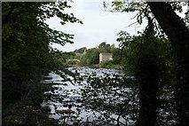 NZ0416 : River Tees by Bob Harvey