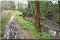 SX4254 : Path by tidal stream, Torpoint by Derek Harper