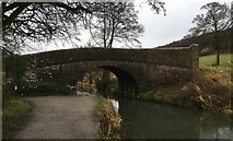 SK3056 : Canal Bridge by Chris Thomas-Atkin