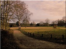 SK6464 : Rufford Country Park by norman griffin