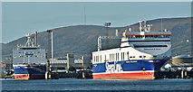 "J3677 : ""Stena Hibernia"" and ""Stena Precision"", Belfast (January 2018) by Albert Bridge"