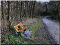 SD7314 : A Place to Pause, Jumbles Country Park by David Dixon