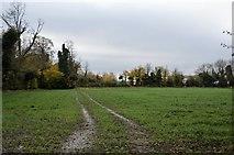 TL4948 : Farmland by N Chadwick
