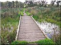 NY4058 : Boardwalk across a pond by Rose and Trev Clough
