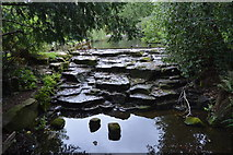 TQ2764 : Grove Park Cascade by N Chadwick