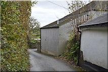 SX4061 : Narrow cornish lane by N Chadwick