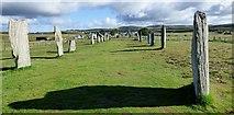 NB2133 : Callanish, North double stone row by Sandy Gerrard