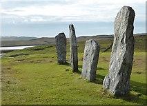 NB2133 : Callanish, West stone row by Sandy Gerrard