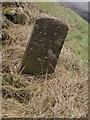 NY8085 : Boundary stone, west of Charlton by Graham Robson
