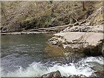 SN9210 : Rapids in the Afon Mellte by Rudi Winter