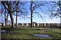 NO3901 : New allotments in Silverburn Park, Leven by Bill Kasman