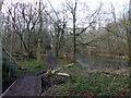 TL2503 : Gobians Pond by PAUL FARMER