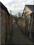 TM0458 : Path to the rear of the east side of Ipswich Street, Stowmarket by Robin Stott