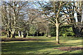 NS3318 : Picnic Area at Rozelle Park by Billy McCrorie