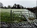 H4863 : Gate, Seskinore by Kenneth  Allen