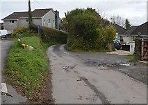 SX4160 : Lane to Burrhills by N Chadwick
