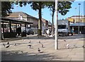 SJ9494 : Pigeons on Hyde Civic Square by Gerald England