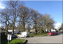 SX7483 : North Bovey village green by David Smith