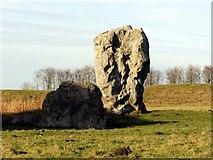 SU1070 : Standing stones in Avebury by Steve Daniels