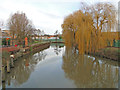 TG2309 : The Wensum from the Jarrold bridge by Adrian S Pye
