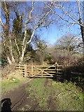 SX7483 : Footpath to Fursdon by David Smith