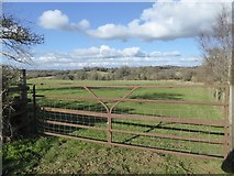 SX7583 : Field south of the valley of Dickford Water by David Smith