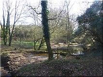 SX7582 : Pool and mud near Peck Farm by David Smith