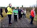 H4841 : One last brief stop in Jenkin Forest by Kenneth  Allen
