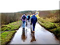 H4841 : First Omagh Church Walking Group, Altagoaghan by Kenneth  Allen