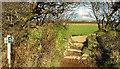 SX0683 : Stile near Delabole by Derek Harper