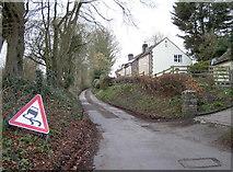 ST7681 : Hill Lane, off the Cross Hands by Neil Owen