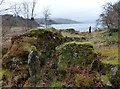 NR9795 : Brainport Bay stone row by Sandy Gerrard