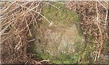 NY2101 : Ordnance Survey Cut Mark by Adrian Dust