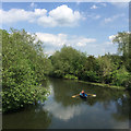 SP2965 : An afternoon row on the River Avon, early summer, Warwick by Robin Stott
